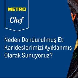 Metro kataloğu ( Bugün yayınlandı )