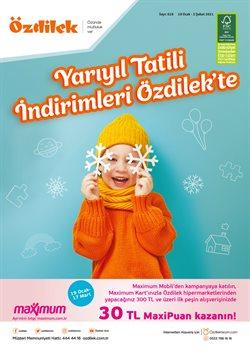 Özdilek Ev Tekstili kataloğu ( Süresi geçmiş )