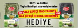 Ankara broşürdeki Çağdaşdan fırsatlar