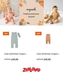 Zeyland broşürdeki Oyuncak ve Bebek dan fırsatlar ( 4 gün kaldı)