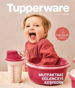 Tupperware kataloğu ( Uzun geçerlilik)