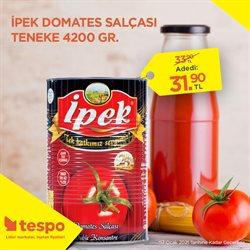İzmir Tespo kataloğu ( Bugün son gün )