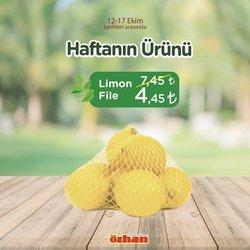 Özhan Market kataloğu ( Yarın son gün)