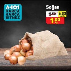 Bursa A101 kataloğu ( Yarın son gün )