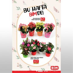 BİM broşürdeki çiçek dan fırsatlar ( Dün yayınlandı)