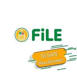 File Market kataloğu ( 6 gün kaldı )