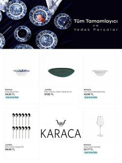 Bursa Karaca kataloğu ( Süresi geçmiş )