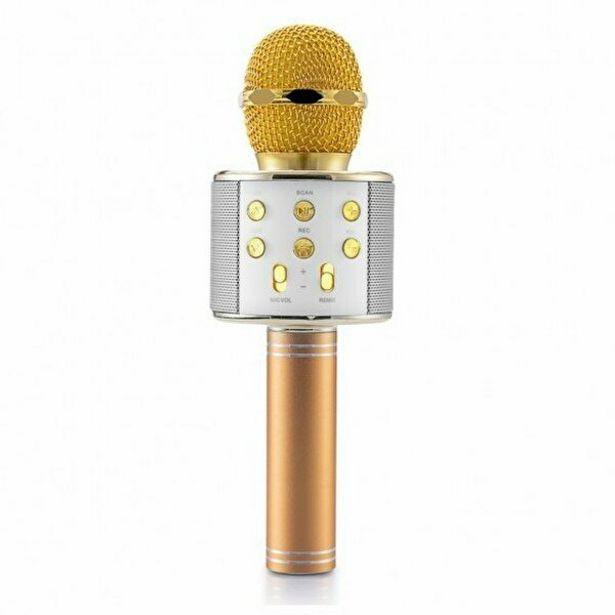 249,9 TL fiyatına Goldmaster Star 2018 Karaoke Mikrofon