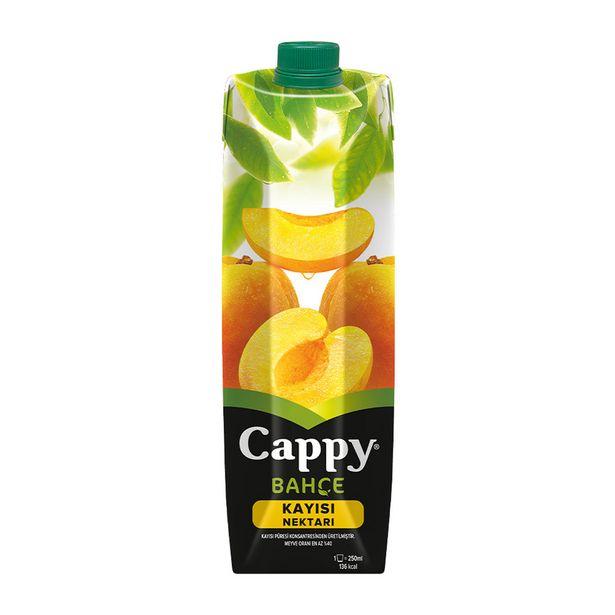 5,99 TL fiyatına Cappy Meyve Suyu Kayısı 1 L