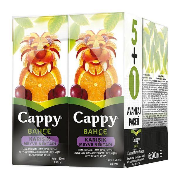 9,99 TL fiyatına Cappy Karışık Meyve Suyu 6X200 ml