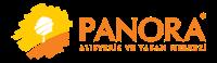 Logo Panora AVM